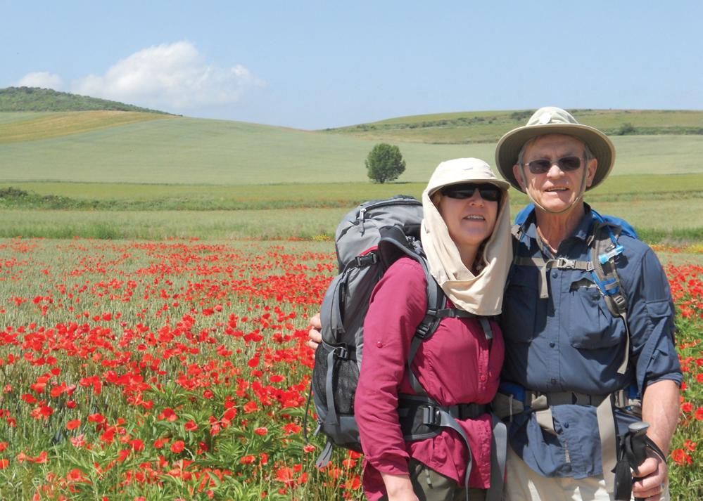 Schaffer on the Camino, field of flowers